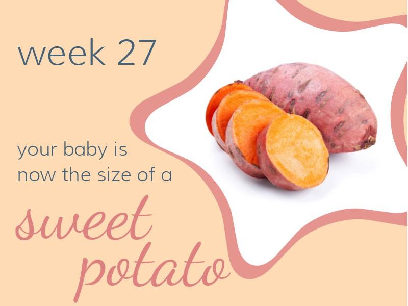 pregnancy-week27