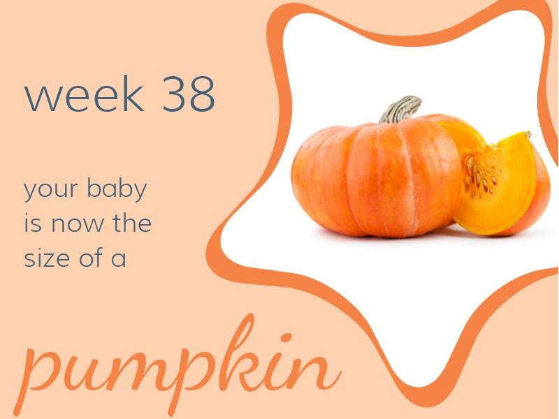 pregnancy-week38