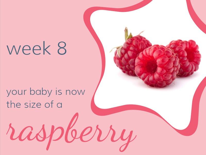 pregnancy-week8