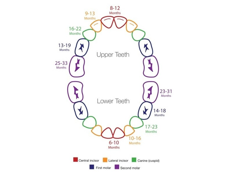 facts on teething and the effects it has on sleep